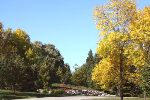 Fall2008-11